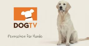 DogTV ab sofort bei Entertain